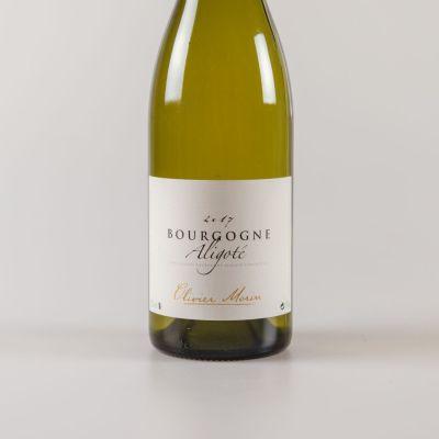 Bourgogne Aligoté Chitry - Aligoté