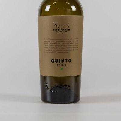 Quinto (voorheen Castore) - Bellone